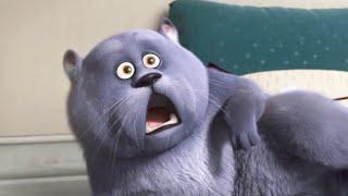 MÈO MẬP ĐI PHƯỢT - Phim Hoạt Hình Hay Chiếu Rạp - Hài Hước Vô Đối - Cười Muốn Bể Bụng