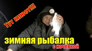 Они не лезут в лунку Зимняя рыбалка 2020 Рыбалка на оз Балхаш