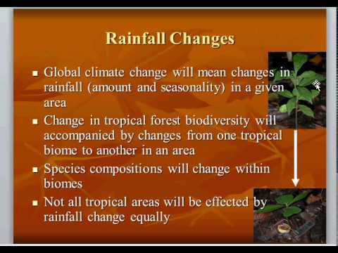 BIOL3465 Tropical Forests and Global Climate Change Lecture 6
