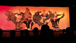 """Lotus Sol performing at the Moonshine Autumn Bellydance Gala 2021 to """"Rona"""" by Alabina"""