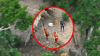 5 Unsolved Forest Mysteries From Around The World
