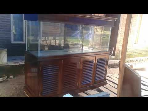 produksi-meja-aquarium-|-buffet-aquarium-|-lemari-aquarium-kaca-asahi-|-toko-aquarium-&-aquascape