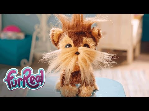 FurReal Friends - 'Shaggy Shawn' Official TV Commercial