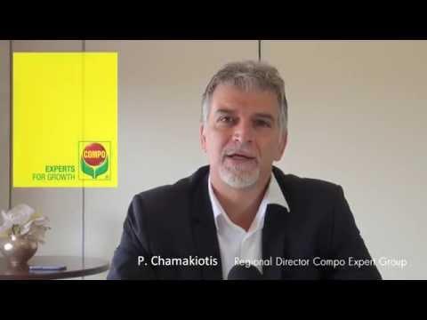 Panagiotis Chamakiotis - Regional Director Compo Expert Group