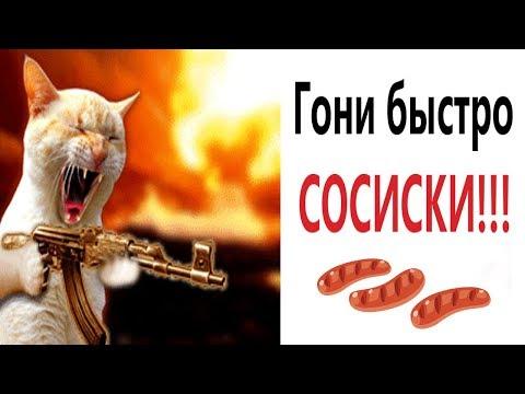 Лютые приколы. ГОНИ БЫСТРО СОСИСКИ! Новые ВИДЕОМЕМЫ (анимация)