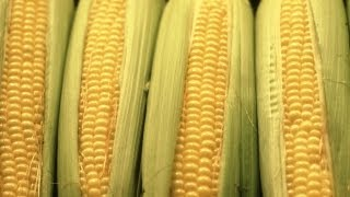 How to Make Corn on the Cob | P. Allen Smith Cooking Classics