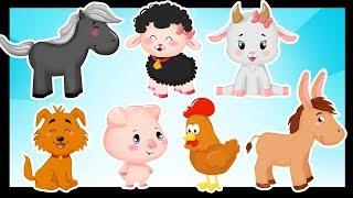 Les animaux de la ferme - Comptines et chansons titounis