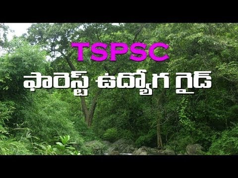 T-SAT || FOREST UDYOGA GUIDE || General Studies - Physical Features of India || K. Elisha