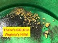 The Rush For Gold In Virginia IV