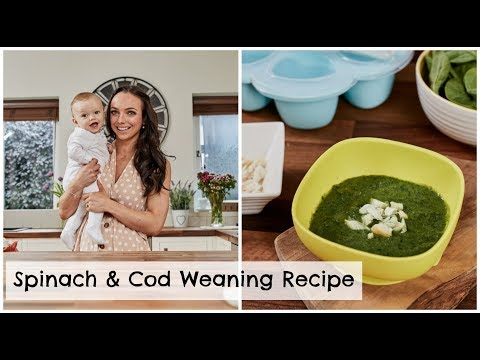 spinach-&-cod-weaning-recipe-for-6-months-+-a-babycook-neo-review!-|-mummy-nutrition