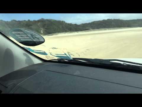 Big ass spider on Fraser Island