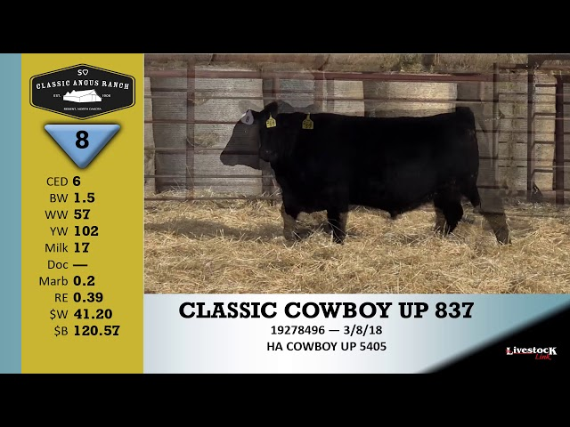Classic Angus Ranch Lot 8