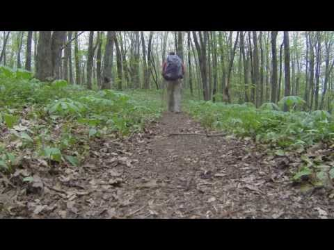 Appalachian Trail   Hughes Gap, TN to Erwin, TN   May 9 11, 2014