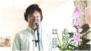 春待ち草 / 走裕介 cover by Shin