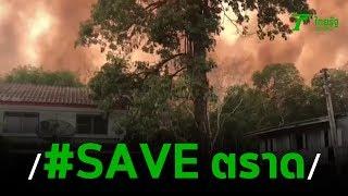#saveตราด ผจญควันไฟป่าเริ่มป่วยทั้งจังหวัด | 25-02-63 | ข่าวเช้าหัวเขียว