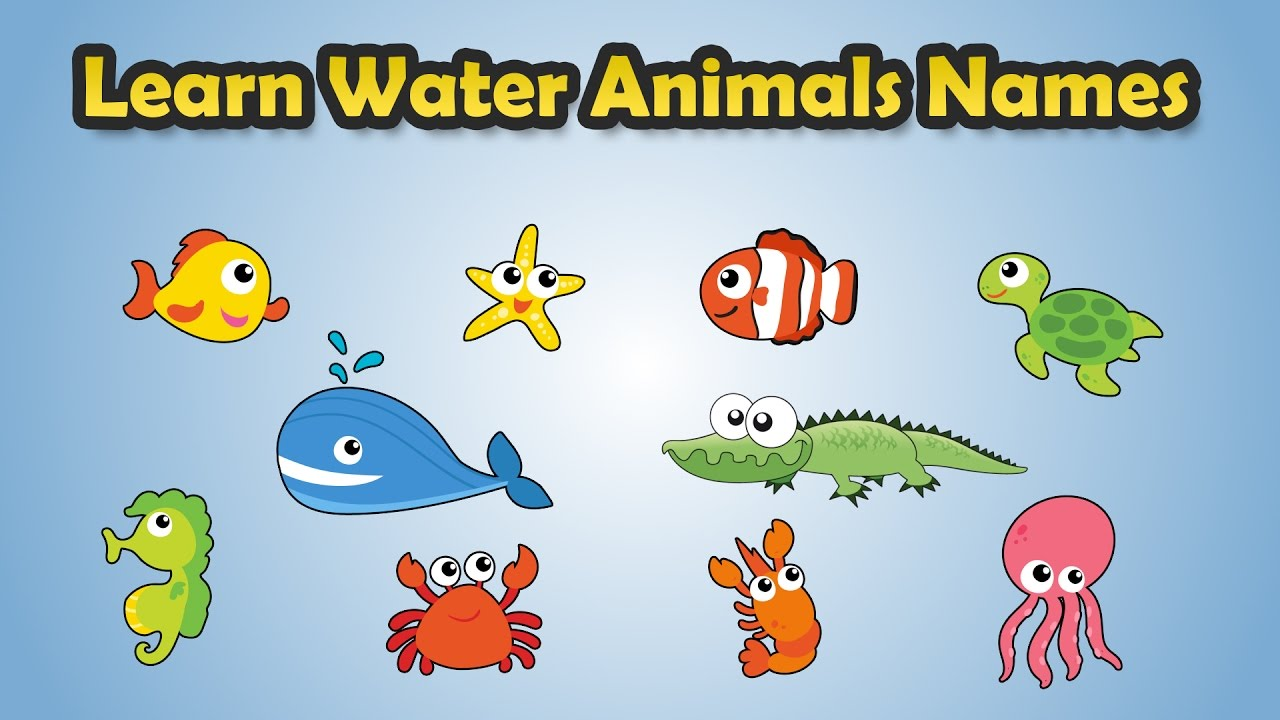 Images of water animals with names