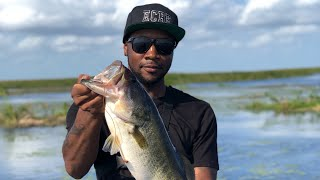 Bass fishing on Lake Okeechobee and crushing Big bass on swim jigs with Captain Kyle Monti
