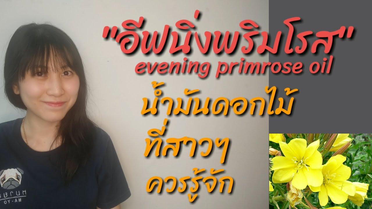 อีฟนิ่งพริมโรส (evening primrose oil) น้ำมันดอกไม้ที่สาวๆควรรู้จัก l เรื่องเล่าจากหมอยา
