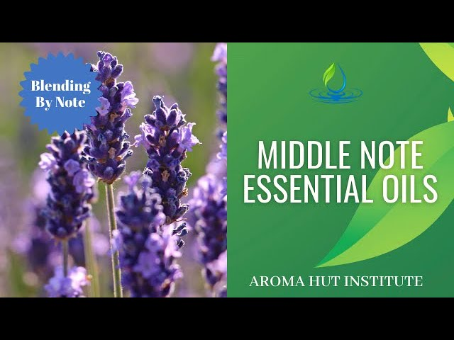 Middle Note Essential Oils | Perfume Notes Explained