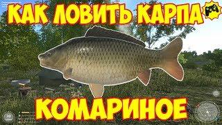 Русская рыбалка 4  КАРП   КОМАРИНОЕ ОЗЕРО   КАК ЛОВИТЬ ГАЙД