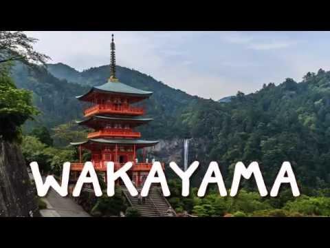 รีวิวทริปวากายาม่า 1 : ฉันคิดถึงเธอ ....Wakayama