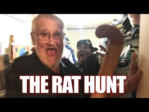 THE RAT HUNT WITH ANGRY GRANDPA!!!