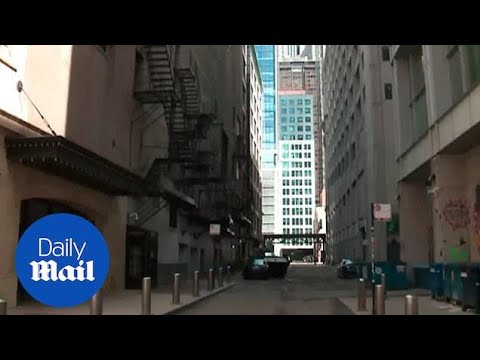 Body Parts Discovered In Alley Behind Chicago Theatre