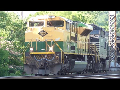 [2x] NS Trains in All Directions in the Outskirts of Chattanooga, TN, 06/16/2016 ©mbmars01
