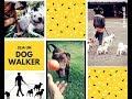 GANHE DINHEIRO PASSEANDO COM Cães - Dog Walker - Vantagens e ganhos!