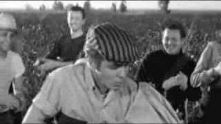 Eddie Cochran - Cotton Picker