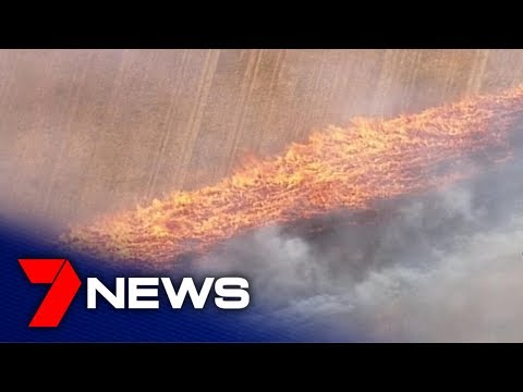 Firefighters Battle Blazes Across SA In Catastrophic Conditions | Adelaide | 7NEWS