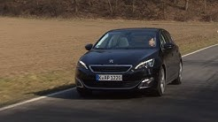 Peugeot 308 HDI: Konkurrenz für den Golf - Die Tester | auto motor und sport