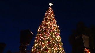 Calico Christmas Tree Lighting Ceremony during Knott's Merry Farm 2017 at Knott's Berry Farm