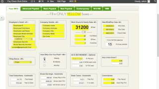 how to make free paystub preview