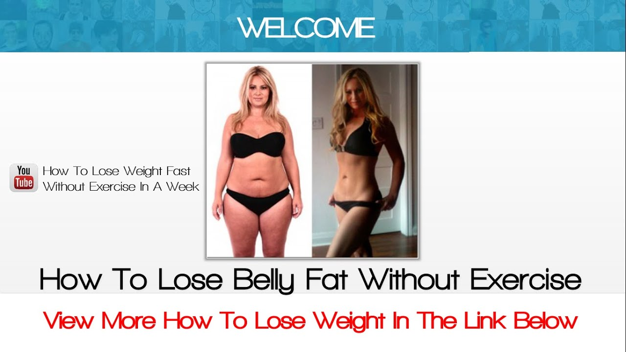 Fat Loss Without Exercise 87