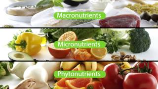 What Supplements Should I Take? The Nutrilite Foundational Four | Amway