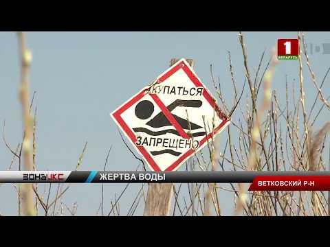 В Ветковском районе