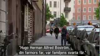 Allt för Sverige   2013, visit Stockholm
