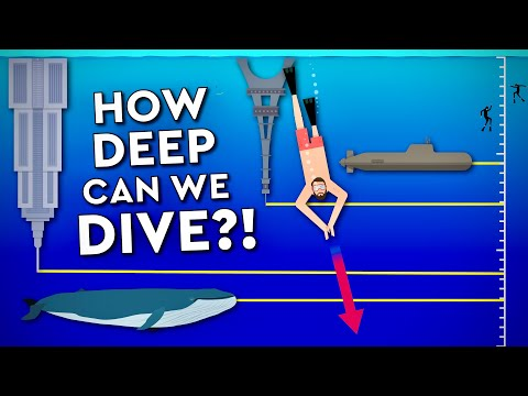 How DEEP A DIVE Can A HUMAN SURVIVE? Myths Debunked