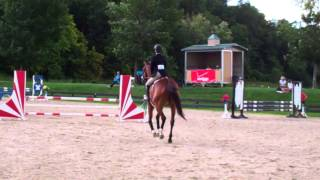 Prince of Hearts & Madison Mullins - Mini Medal - HITS Saugerties - August 4, 2013
