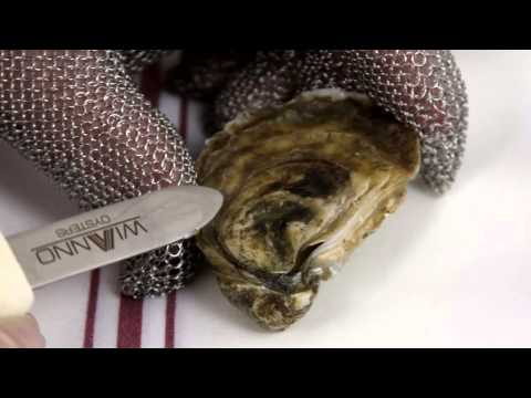 How to Shuck an Oyster: The Right Way!