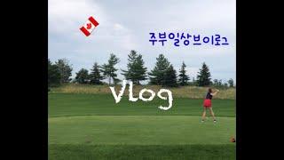 vlog캐나다 일상 브이로그 /쇼핑몰reopen/zar…