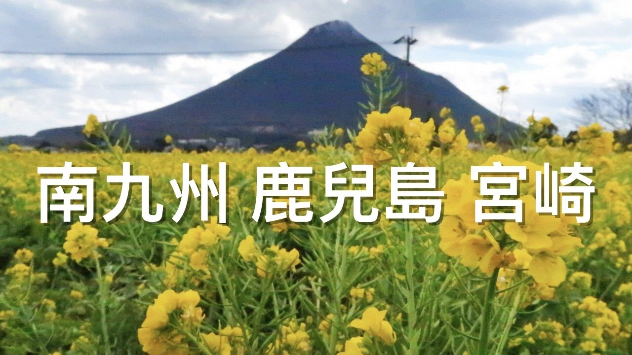 すべての花の畫像: ロイヤリティフリー九州 鹿兒島