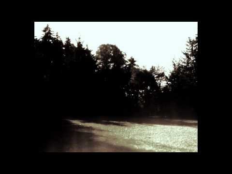 Cicatrices - Strings of Sorrow