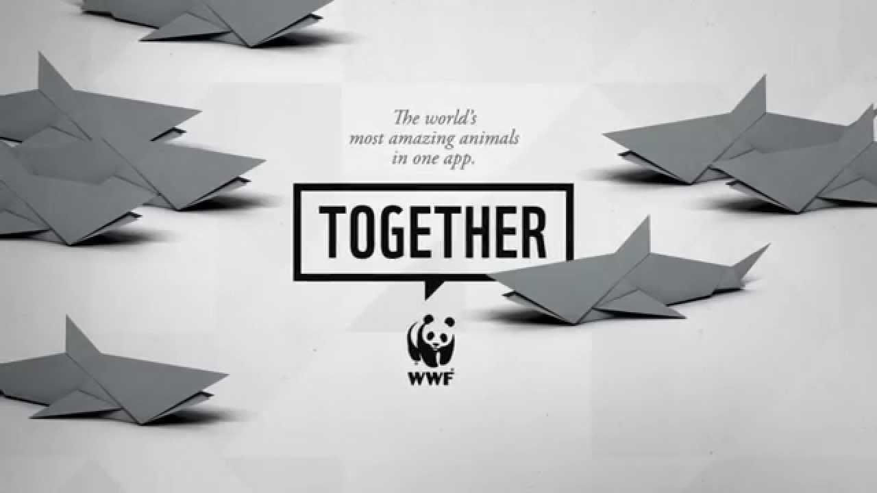 WWF Together - Sharks - YouTube