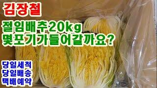 김장철 절임배추20kg…