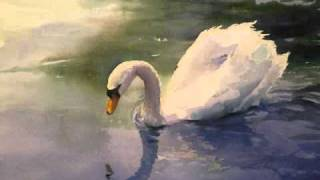 Swan Lake Ballet (Tchaikovsky) - Act II: X. Scene (Moderato)
