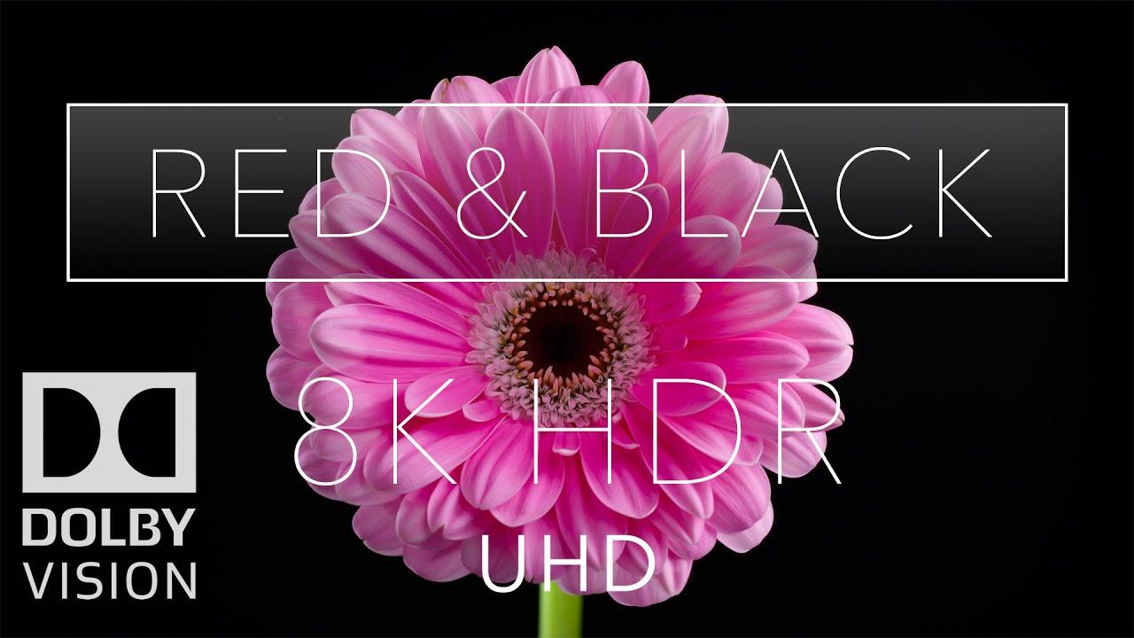 8k HDR Red & Black Dolby Vision