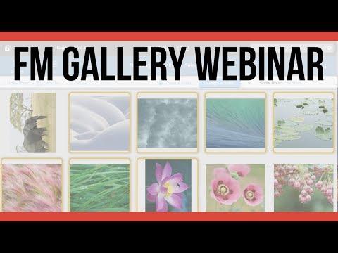 FM Gallery Webinar 2017 |  FileMaker Pro 16 Videos | Online FileMaker 16 Training Videos