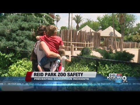 How Reid Park Zoo keeps you safe from animals